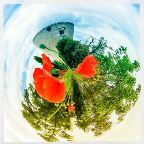 revemaplanete-by-laurence-bichon-126-800x800