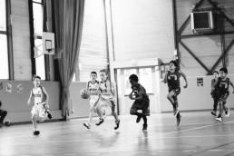 20161113-asm-basket-poussins-by-laurence-bichon-20