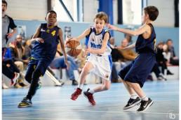 20160320-asm-basket-poussins-by-laurence-bichon-800x572-web_mini