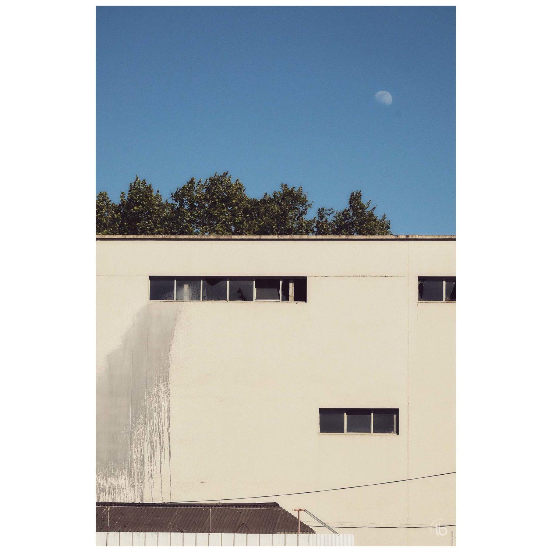 Laurence Bichon - N6