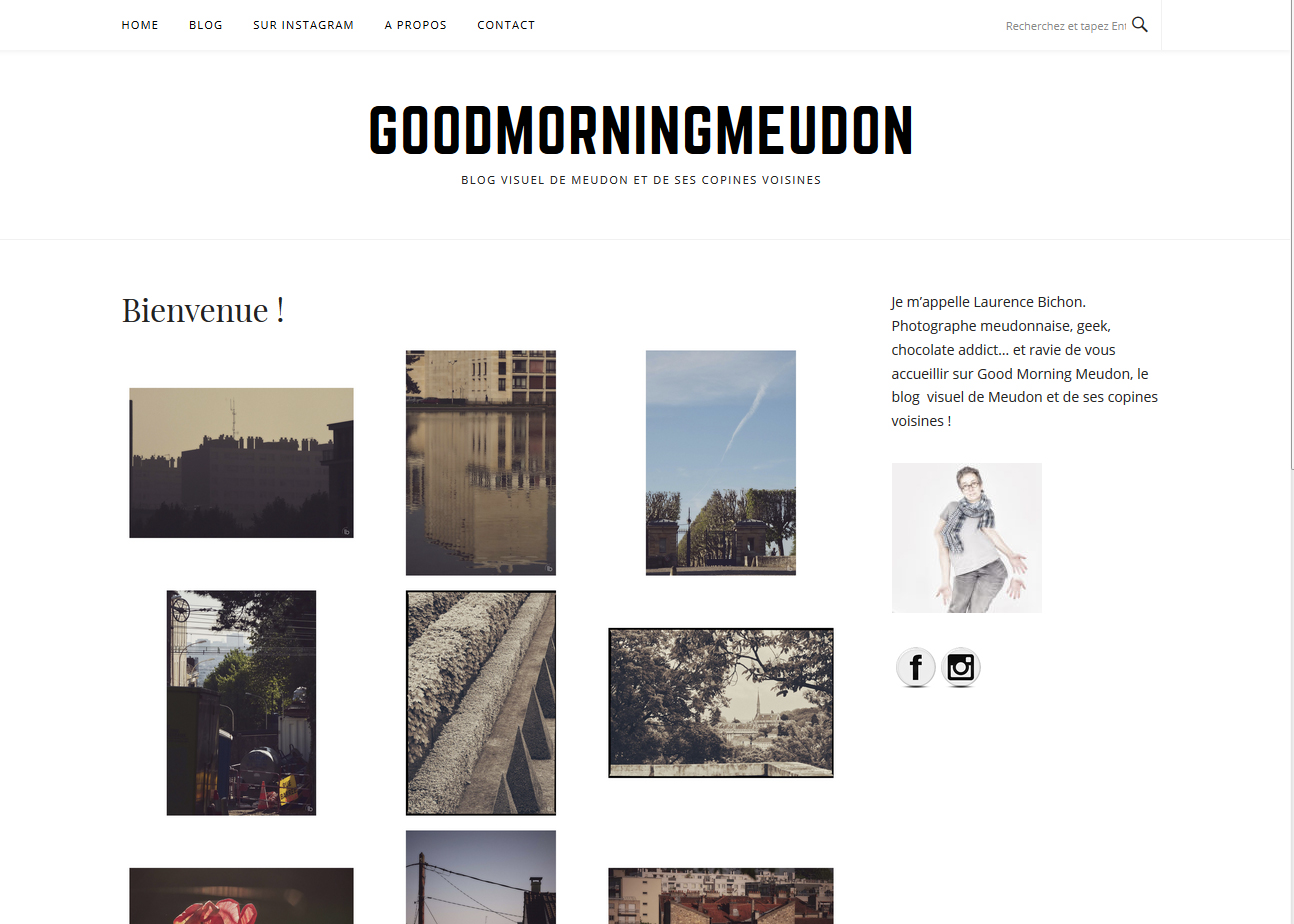 page d'accueil de goodmorningmeudon by laurence bichon