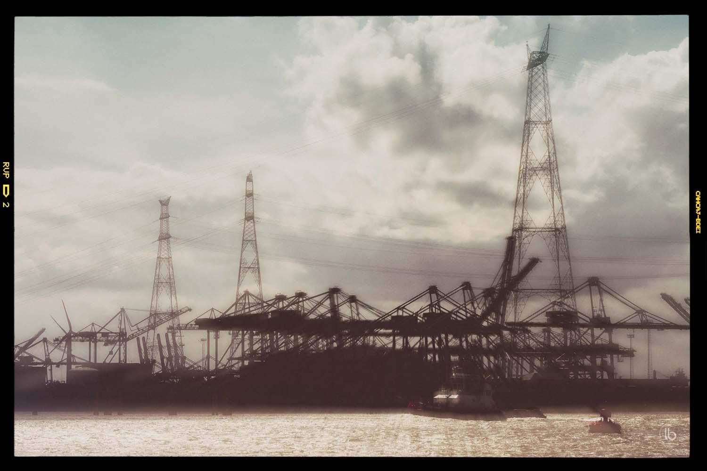 Grues au port - laurence bichon photographe