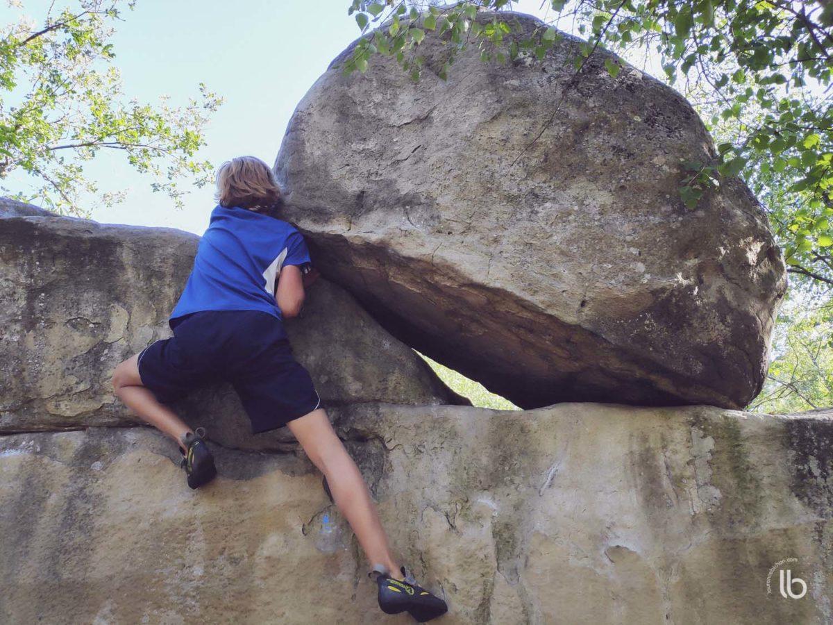 Fontainebleau - Gorge aux Châts - 5 bleu