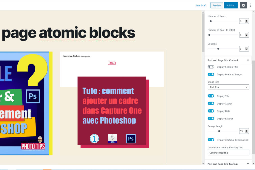 "Screenshot of the Atomic ""Post and Page Grid"" Block options - by Laurence Bichon Photographer"