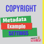 Feature for an article with metadata idea set for freelance photographer