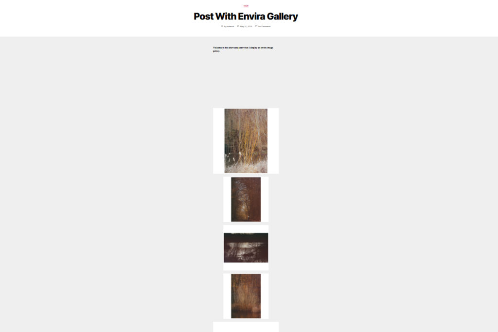 Envira gallery displayed as AMP page with AMP official plugin.