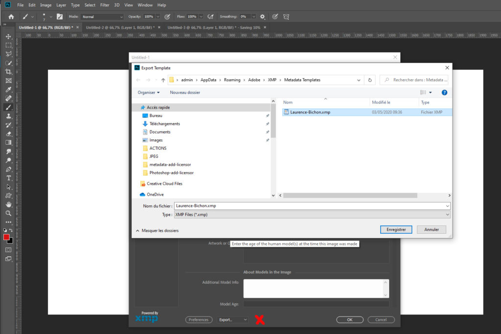 Screenshot : A Photoshop Metadata template is stored in a file.