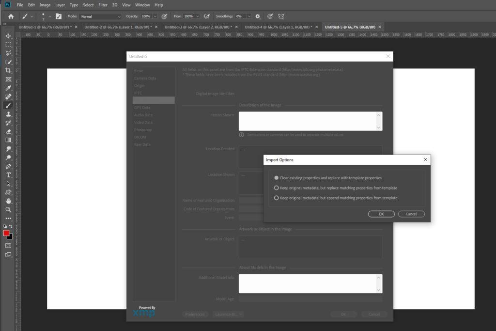 Screenshot metadata template import panel