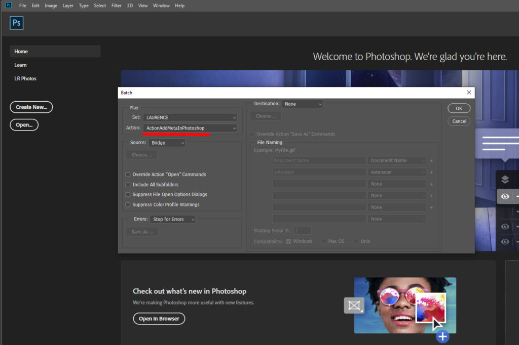 Screenshot for the select action in the Photoshop batch tool panel.